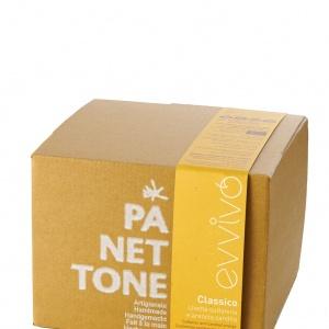 Hand Made Organic Classic Panettone